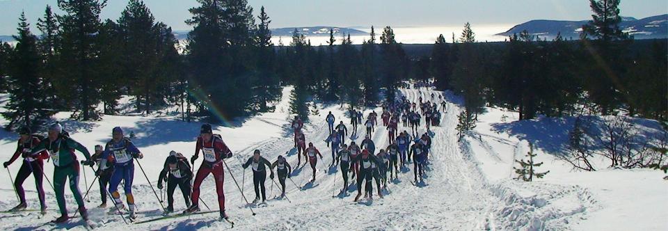 Fachgeschäft für Skilanglauf